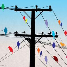 birds Art Print by Mark Ashkenazi | Society6