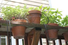 herb rail rack