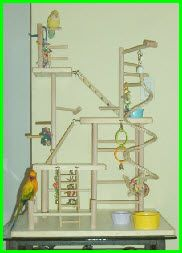 DIY bird toys, play stands, perches, ect - great website for parrot lovers