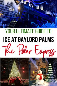 Gaylord Palms ICE features 2 million pounds of carved ice featuring The Polar Express! You can also snow tube, visit Santa, and do Elf Training. Find your complete guide here! Florida Vacation, Florida Travel, Florida Beaches, Things To Do At Home, Stuff To Do, Travel With Kids, Family Travel, Christmas Florida, Visit Santa