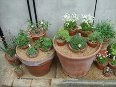 Pretty awesome idea, pots inside pots!