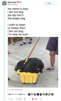Funny Pictures of The Day 127 Funny Animal Memes, Cute Funny Animals, Funny Cute, Funny Dogs, Hilarious, Dumb Dogs, I Lik The Bred, Funny Tweets, Funny Memes