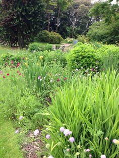 ness botanical gardens may 2014 uk - Garden Ideas 2014 Uk