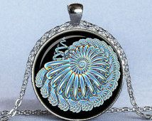 TEAL NAUTILUS Fractal Pendant Teal and Black Fractal Jewelry Glass Pendant Necklace Included