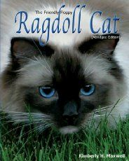 Ragdoll cats are one of the most sought after pedigree breeds of cat at the moment. A striking appearance, sweet nature and kind demeanour have made the Ragdoll breed one of the rising stars of the feline world. In this article we are going to take a look at the fascinating Ragdoll cat breed. Finding …