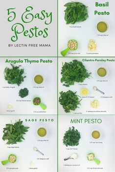 Overloaded with summer herbs? Try these 5 easy pesto recipes from Lectin Free Ma.-Overloaded with summer herbs? Try these 5 easy pesto recipes from Lectin Free Ma… Overloaded with summer herbs? Try these 5 easy pesto… - Vegetarian Recipes, Cooking Recipes, Healthy Recipes, Easy Recipes, Cooking Eggs, Vegetarian Italian, Summer Recipes, Ninja Blender Recipes, Healthy Sauces