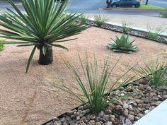 Landscapes, Backyard, Outdoors, Plants, Gardening, Scenery, Paisajes, Patio, Backyards