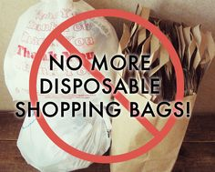 This is my public declaration--no more disposable shopping bags for me!
