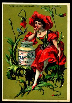 1883.  Poppy Flower Girl trading card issued by Liebig Extract of Beef Company. S133.
