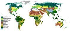 Vegetation - Biome - Wikipedia