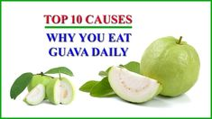 Guava Benefits – Top 10 Guava Health Benefits and Natural Usefulness as ...