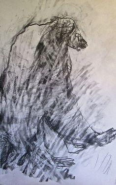Bear, Gael Kanievsky
