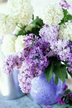 Fresh Lilac Arrangement