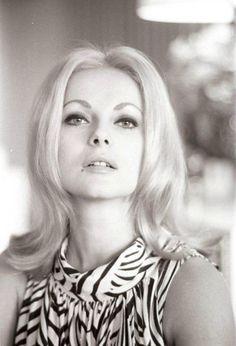 a Virna Lisi Italian Beauty, Sophia Loren, Black And White Pictures, Cinema, Actresses, November 8, People, Golden Age, Divas