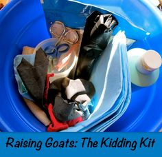 kidding kit: what supplies you need before your goat gives birth