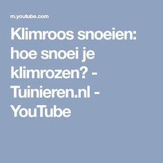 Klimroos snoeien: hoe snoei je klimrozen? - Tuinieren.nl - YouTube