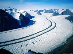 north east greenland - Google Search