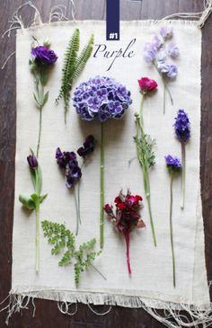 flower guide-purple