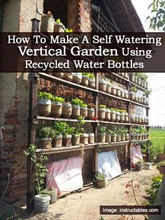 How To Make A Self Watering Vertical Garden Using Recycled Water Bottles