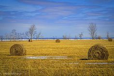 1st day of spring near the tip of the thumb in Michigan. The round bales of hay have spent the winter enjoying the view of Lake Huron during the record freeze of 2013-2014. #farm,#farming,#hay,#bales