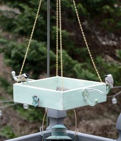 What a fun spring project- Easy Box Bird Feeder