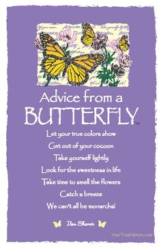 Spirit Totem Animals:  #Advice from a #Butterfly.