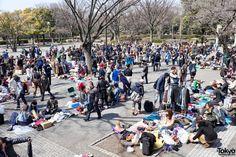 Tokyo: Yoyogi Flea Market