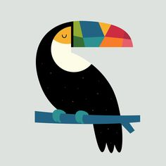 Rainbow Toucan - Be your own kind of beautiful : )