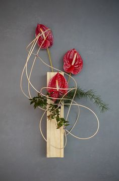 At Hamakuma Ikebana we provide ikebana arrangements and study options for people interested to learn ikebana in the canberra area. Ikebana Arrangements, Floral Arrangements, Flower Arrangement, Hanging Flowers, All Flowers, Purple Flowers, Soutache Tutorial, 3d Shapes, Flower Tattoos