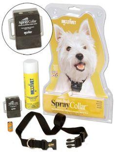 PetSafe Anti-Bark Collar Citronella (KIT11122)