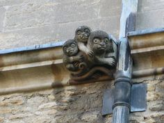 Gargoyles? On the side of a building in Oxford, England.