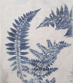 Delicate fern printed on a gelatin plate by Linda Germain Daniel Smith inks on tissue paper