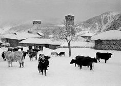 Winter in #Svaneti