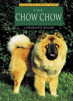 The Chow Chow PDF By:Charlotte WilcoxPublished on by Capstone Fluffy Dog Breeds, Fluffy Dogs, Chow Chow Dogs, Dog Facts, Nonfiction Books, Pet Care, Teddy Bear, Puppies, Pets