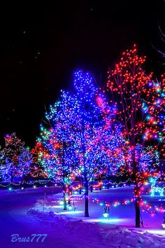 Holiday decorations. Snowing Gif, lights gif. Send beautiful GIF message to loved ones. Tap to see more beautiful animated GIF as Greeting cards & messages for Messengers, Whatsapp and Emails. Mobile screensavers Christmas lights! @mobile9 #gif