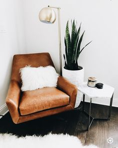 Leather chair, snake plant, white accents
