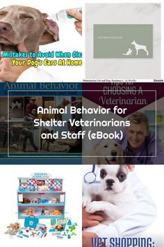 Animal Behavior for Shelter Veterinarians and Staff (eBook)