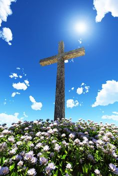 Hep C patients can live beyond fear with Hepatitis C. No matter what stage of Hepatitis C, we can find peace in the storm. Happy Easter, Easter Bunny, Easter History, Hepatitis C, Cross Wallpaper, Old Rugged Cross, Easter Religious, Cross Art, Easter Pictures