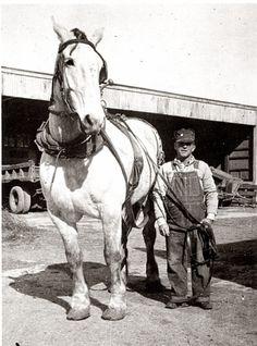 1945 ~ a man and his horse, Kansas.