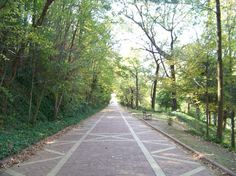 Photo of Grand Promenade