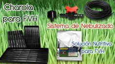 Guia: Producción Intensiva de Forraje Verde : .: Hydro Environment .: Garden Hose, Mexico, Outdoor, Sustainable Farming, Pest Control, Dogs, The Great Outdoors, Outdoors, Mexico City
