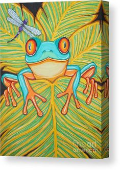 Dragonfly Drawing, Frog Illustration, Frog Drawing, Red Eyed Tree Frog, Frog Crafts, Frog Art, Tree Frogs, Art Classroom, Silk Painting