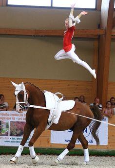 Jump! - Julia Pitchford