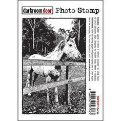 Darkroom Door Photo Stamp - Horse