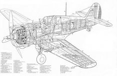 Curtiss Hawk 75A-2 Cut-away