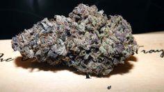 Moonstone grown by Mr K
