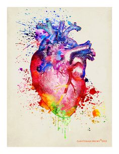Watercolor Heart 11 x 14 Anatomy Medical print by ArtOfThePage