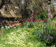 Magical Cottage Gardens by the sea in Ireland, the perfect vacation rental.