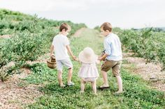Wilsons & Co. Summer Berry Picking  #cutesiblings #summerclothes #siblingphotography #summertime #berrypicking #blueberrypicking #farmtotable #ministyle #blogging #momblogger #orchard #blueberries #strawhat #plumandsparrow #heirloom #marketbasket #lifestyle #lifestylephotography #candidchildhood #children #photography #babies #children #paphotography #explorepa #babygirl #babygirlclothes #pinkclothes #bloomers #strawhat