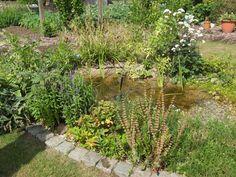 poeltje omgeven door bloeiende oeverplanten - De Groene Klusser